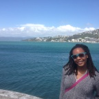 Finding a Job in Wellington on a Working Holiday Visa
