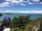 Great Walk #5: The Abel Tasman Coast Track