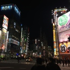 Next Level Larping: MariCAR Akihabara
