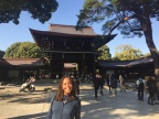 Another Sunny Day Sightseeing in Tokyo