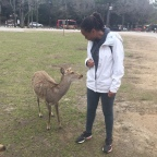 Animal Adventures in Japan Part 2: The Deer of Nara